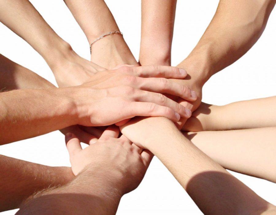 união-faz-a-força-temas-para-treinamentos-de-manipuladores-de-alimentos.